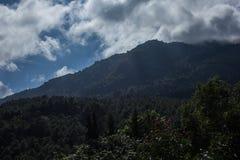 Status bovenop berg om deze landschapsmening te zien Royalty-vrije Stock Foto's