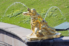 Statuy fontanna w Peterhof Obrazy Royalty Free
