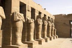 Statuy inny Egipt Z świątynnymi zabytków megalitami fotografia royalty free
