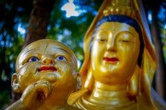 Statuy przy dziesięcia tysięcy Buddhas monasterem w Sha cynie, Hong Kong, Chiny Obraz Stock