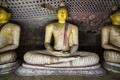 Statuy Siedzieć Buddhas Zdjęcia Royalty Free