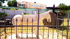 Staty av åsnan Royaltyfria Bilder