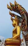 Staty av buddha Royaltyfri Bild