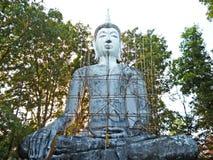 Staty av buddha Arkivbilder