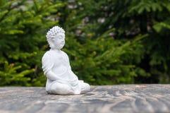 Staty av Buddha - fridsam mening Vit gud på suddighetsgräsplanbakgrund Meditera begreppet Royaltyfria Foton