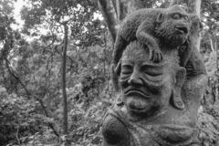 Staty av en apa som sitter på gammal kvinnas huvud i sacretapaskogen i Ubud Bali arkivbilder