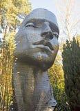 Staty av en framsida i träna arkivfoton