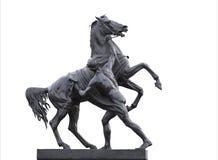 Staty av en häst som är mer tamer i St Petersburg Fotografering för Bildbyråer