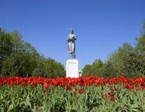 Staty av en kollektiv bonde på en sockel Legaten av den sovjetiska eran En rabatt med tulpan och barnträd in royaltyfri bild