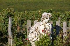 Staty av en pojke som rymmer en korg med druvor p? bakgrunden av ving?rdar i den Saint Emilion regionen france arkivfoto