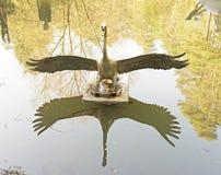 Staty av en svan på en sjö arkivbild