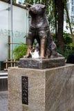 Staty av Hachiko i Tokyo, ett symbol av lojalitet royaltyfri bild