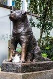 Staty av Hachiko i Tokyo, ett symbol av lojalitet royaltyfri foto
