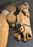 Staty av huvudet av en grekisk häst arkivbilder