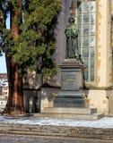 Staty av Ulrich Zwingli på vattenkyrkan Arkivfoto