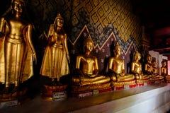 Staty för många buddhas Arkivfoton