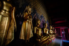 Staty för många buddhas Royaltyfria Bilder
