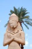 staty för ramesses ii arkivfoton