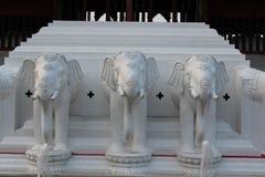 Staty för vit elefant Fotografering för Bildbyråer