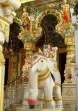Staty för vit elefant för sten i en tempel Royaltyfri Bild