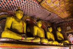 Statyer av Buddha, Dambulla grottatempel, Sri Lanka royaltyfri foto