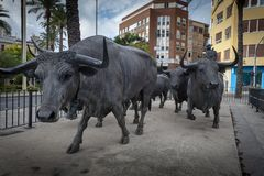 Statyer av tjurar i Alicante arkivfoto