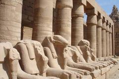 statyer för egypt lionserie Royaltyfria Foton