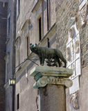 Statyhon-varg med Romulus och Remus på ställe av fundamentet av Rome Arkivfoto