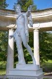Statyn av Apollo Belvedere i Pavlovsk parkerar, St Petersburg Arkivbild
