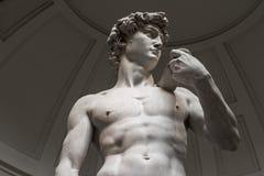 Statyn av David ?r en nedersta sikt utan turister royaltyfria bilder
