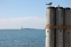 Statyn av frihet, New York, USA Fotografering för Bildbyråer