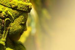 Statyn av gudinnafen förlade utomhus, fuktighet från mossagräsplan Arkivfoton