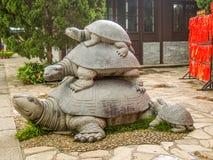 Statyn för tre sköldpaddor på Hainan parkerar av livslängd Arkivfoto