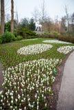 Statyn parkerar in Keukenhof är världens den största blommaträdgården arkivbild