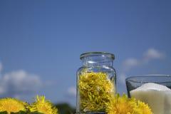 Stau von den Blumen des Löwenzahns lizenzfreie stockfotos