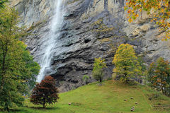 Staubbach waterfall in Lauterbrunnen Switzerland. View at the famous Staubbach waterfall in Lauterbrunnen, Berner Oberland, Bernese Oberland in Switzerland Stock Images