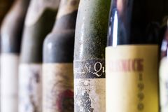 Dusty wine bottles on by one royalty free stock images