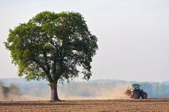 Staubiger Traktor-Baum Stockfoto