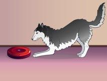 Staubsauger und Hund Ein Roboter ist ein Staubsauger und ein Hund staubsauger Arbeitsstaubsauger Nahaufnahme lizenzfreie abbildung