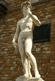 Staue of  David from Florence Stock Image