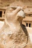 Staue de Horus, templo da rainha Hatshepsut imagem de stock royalty free