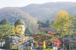 Staue in Temple in south Korea Stock Photography
