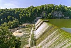 Stauen Sie auf dem Fluss das Moorhuhn. Ukraine Lizenzfreie Stockfotos
