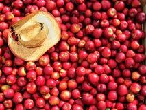 Stauraum voll der roten Äpfel. Stockbild