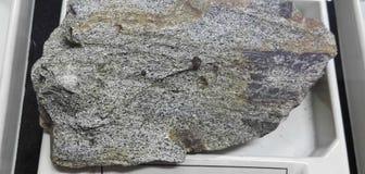 Staurolitu schist osadowe skały obraz royalty free