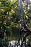 Stauwasser von Kuttanad Lizenzfreies Stockbild