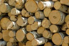 Staven voor brandhout van berk Stock Fotografie