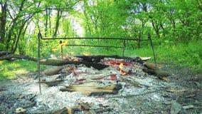 Staven voor grill stock video