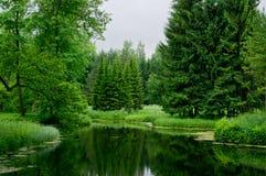 Staw i drzewa w Tsarskoye Selo (Pushkin) Catherine 24 km imperiału park szlachetności Petersburgu centrum pobyt rodzinny poprzedn obrazy stock