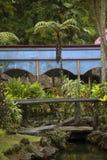 Staw przy lokalnym rynkiem, Fiji Zdjęcia Stock
